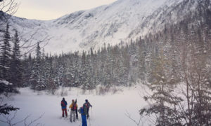 Chic Choc backcountry