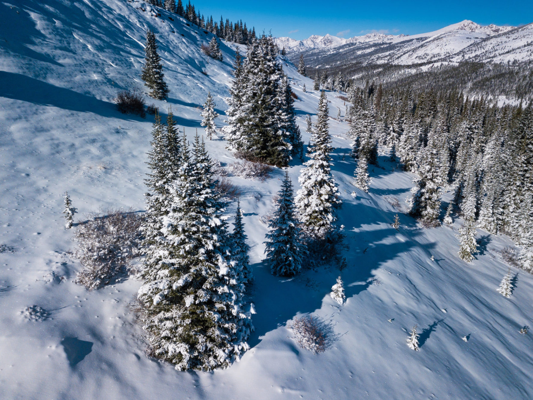 colorado vail pass backcountry