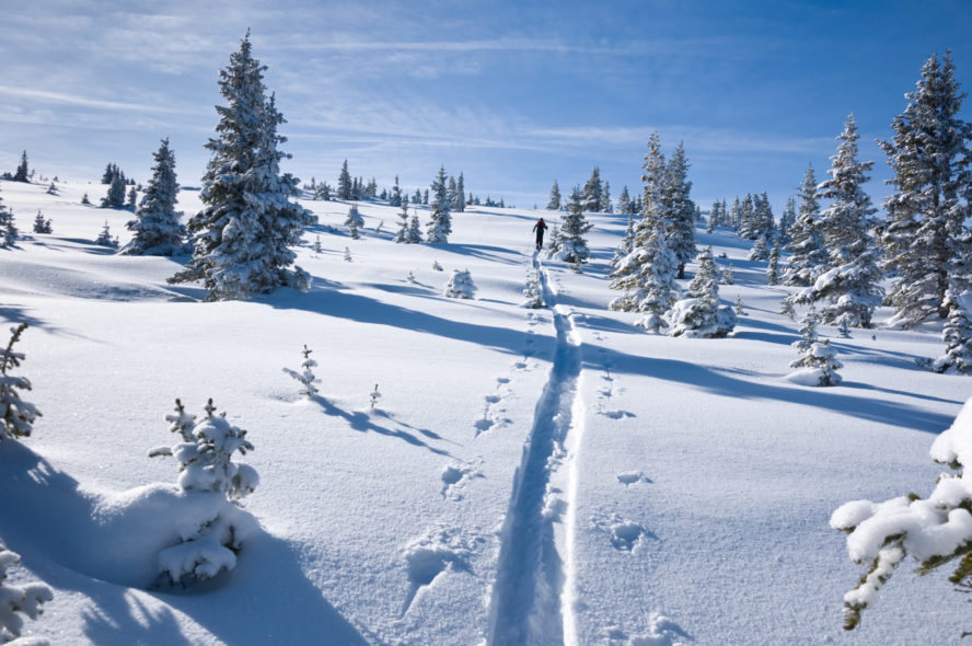 snow in colorado backcountry