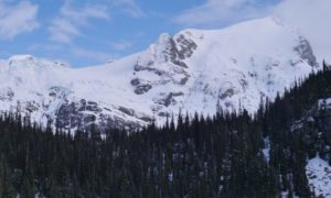 Skiable pow on Duffey Lake Road
