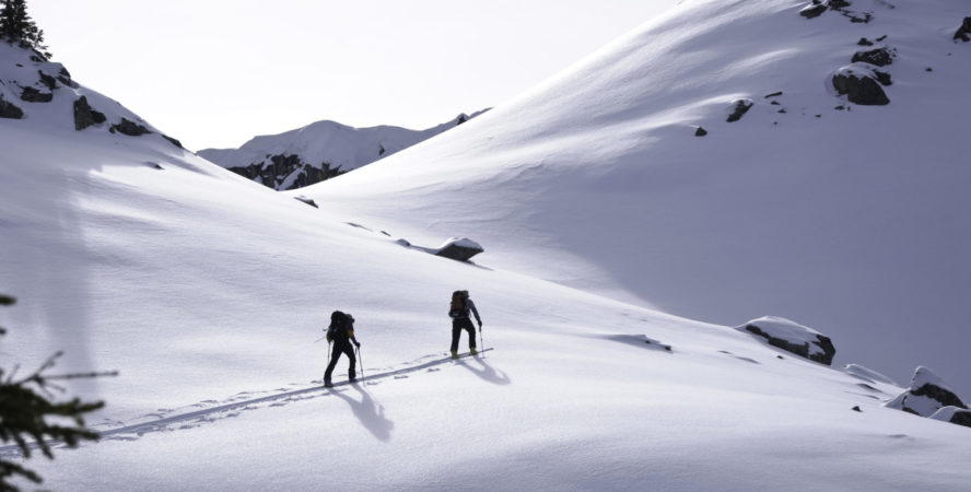 Backcountry skiers earning turns