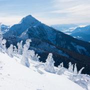 Revelstoke mountains