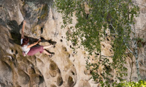 Man climbing rock face in Fontainbleau