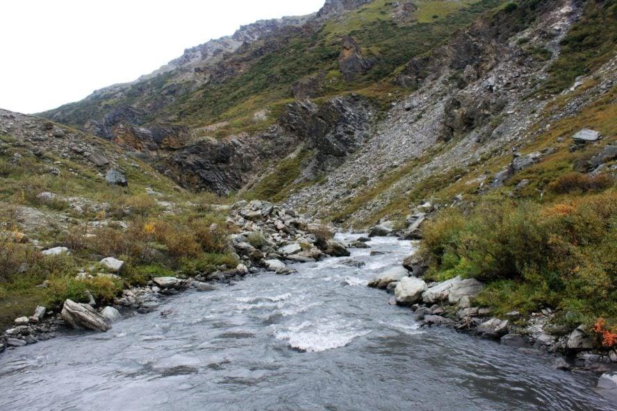 Savage River Alaska Hiking