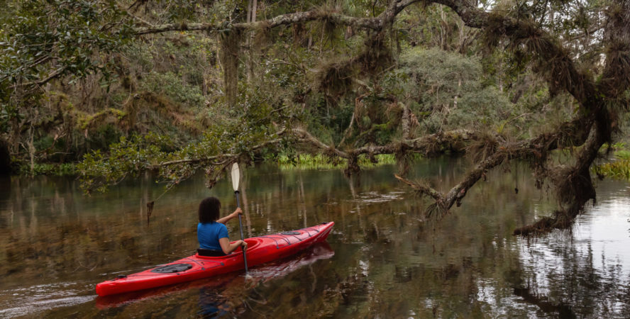 Kayaking in Chassahowitzka River