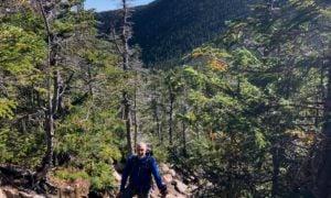 White Mountains hiking