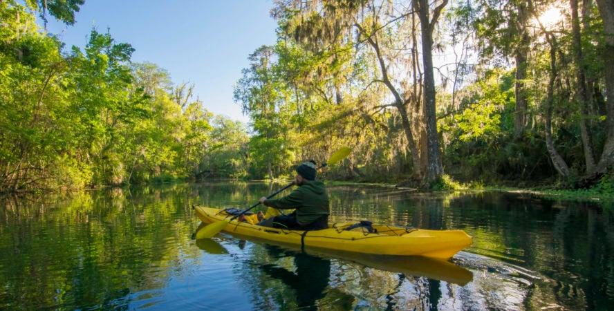 Silver River Kayaker