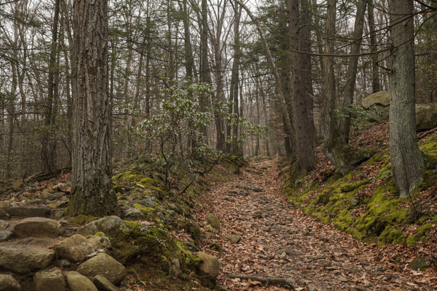 hiking trail in bear mountain state park