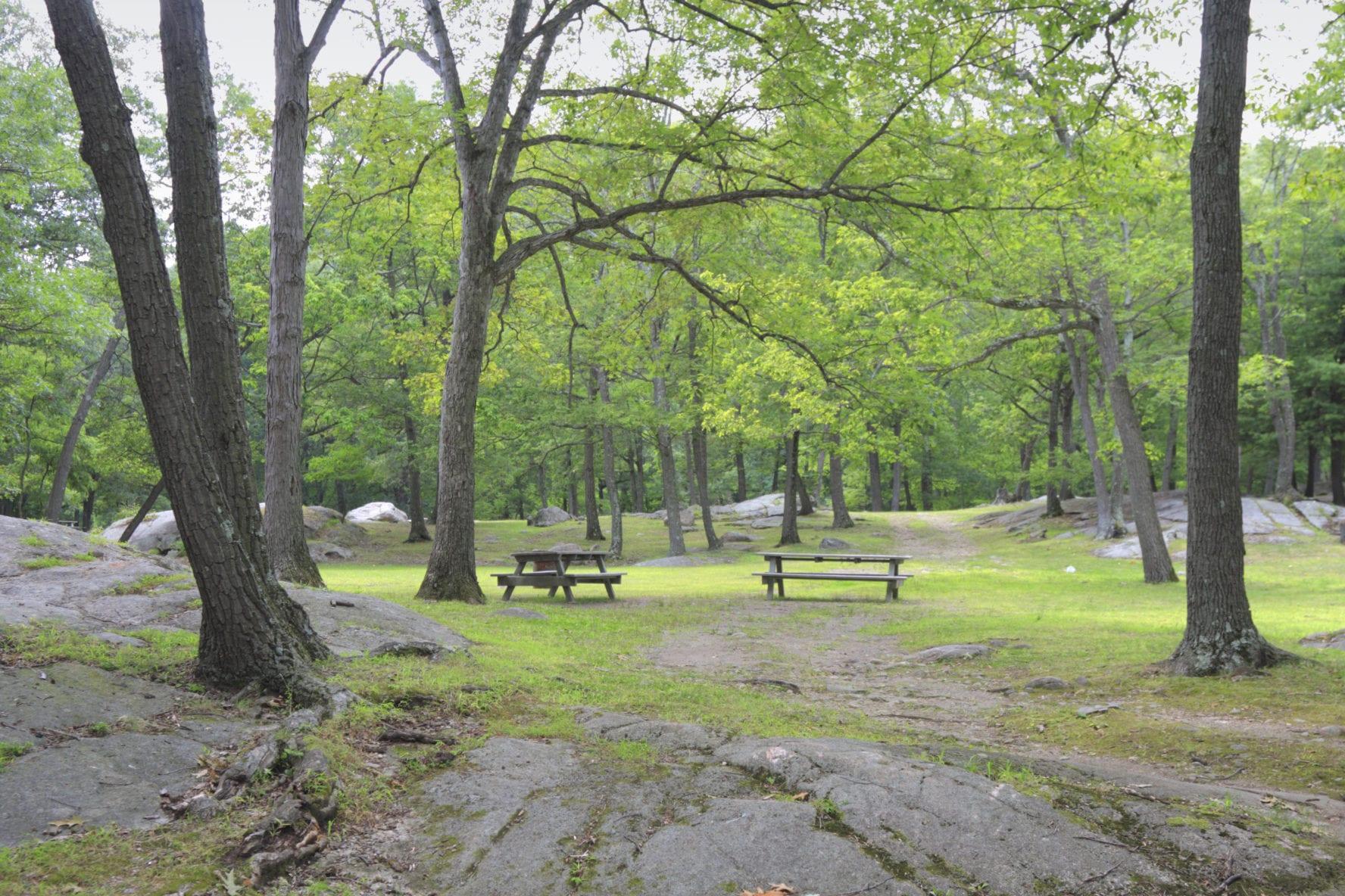 Bear Mountain picnic area