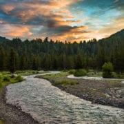 Pebble creek in Lamar Valley Yellowstone