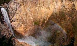 Yellowstone Lower Falls Canyon