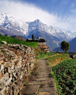 Annapurna mountain View from Ghnadruk Village Nepal, Fish tail mountain and Annapurna mountain.