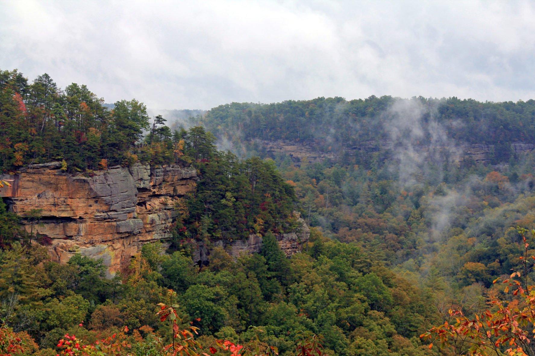 Swift Creek Camp Overlook