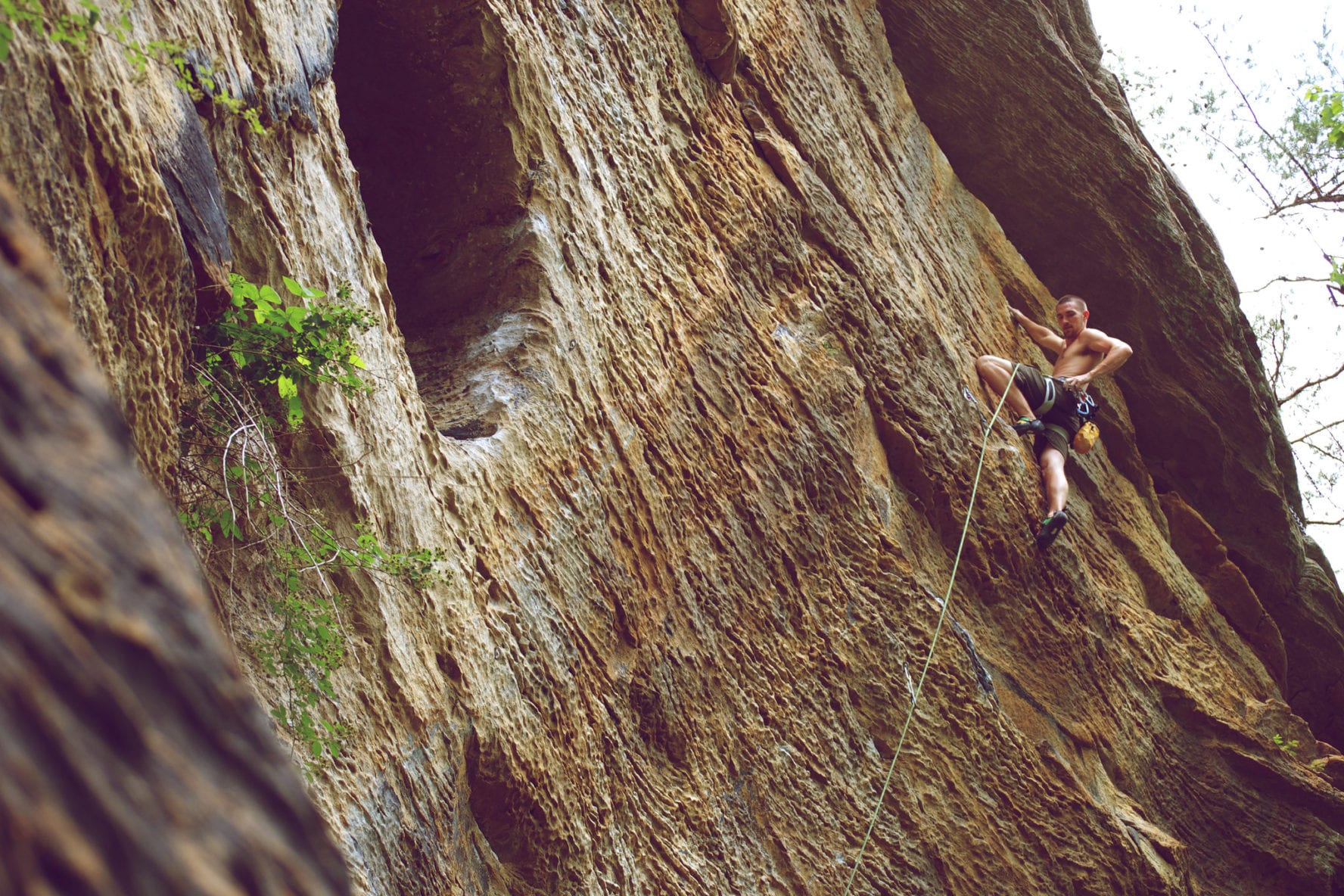 rock climbing at red river gorge