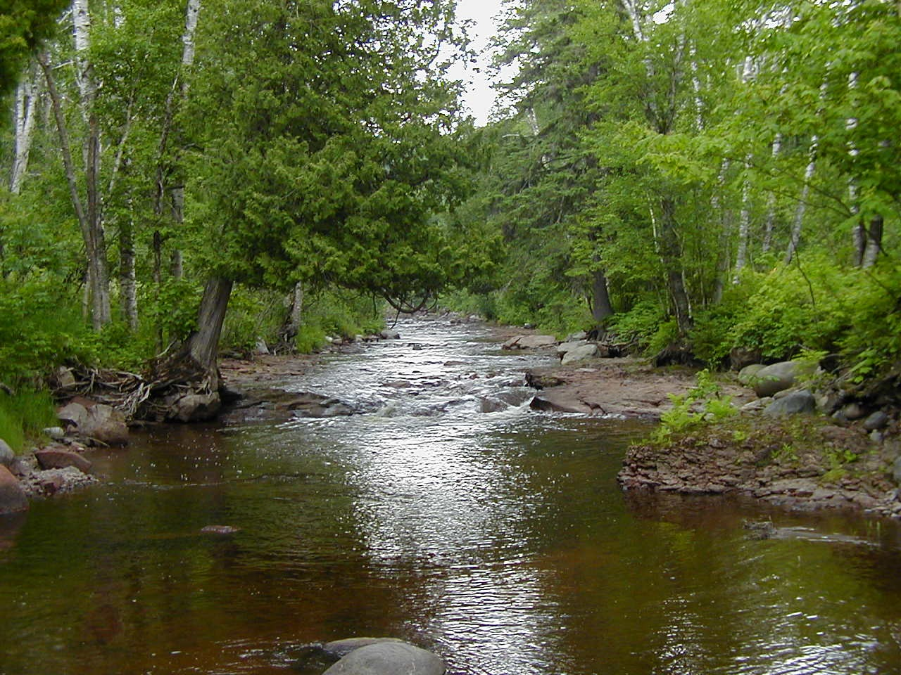 The Caribou River