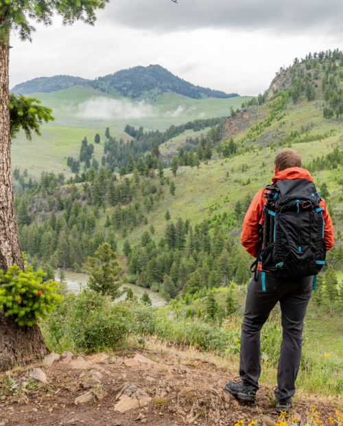 Private Guided Day Hikes In Yellowstone National Park 57hours