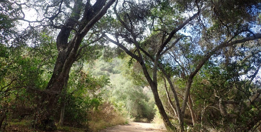 San Diego hiking