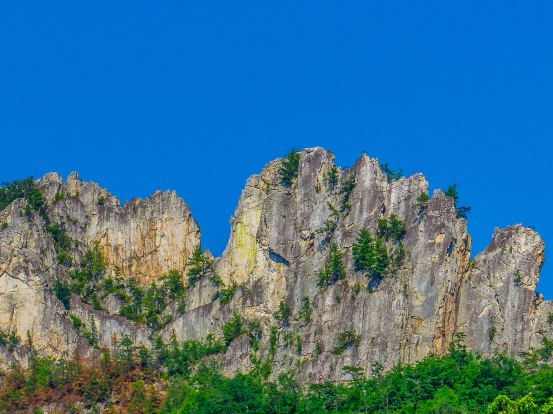 Seneca Rocks Cimbing