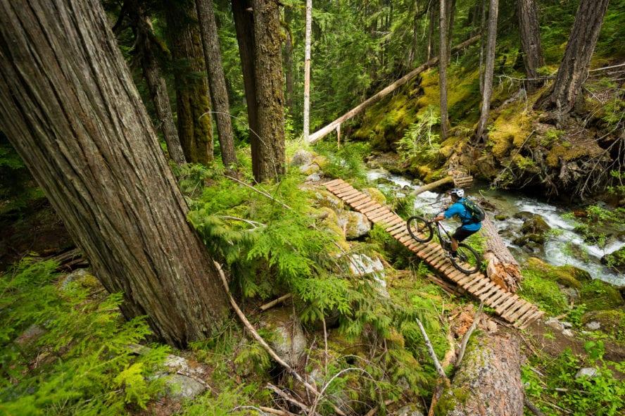Cross country biking in Whistler
