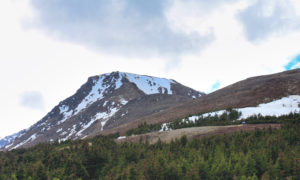 hiking in Alaska