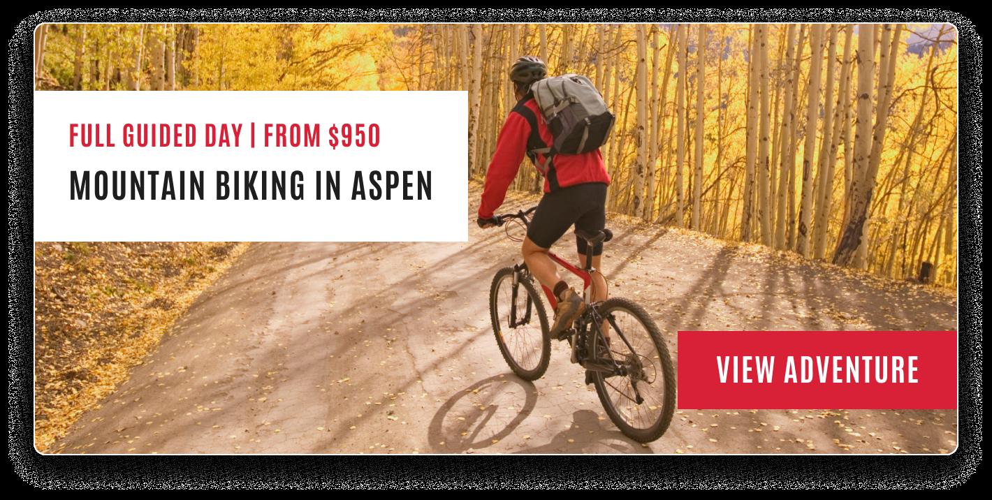 Aspen MTB
