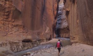 Hiking Zion Video 1