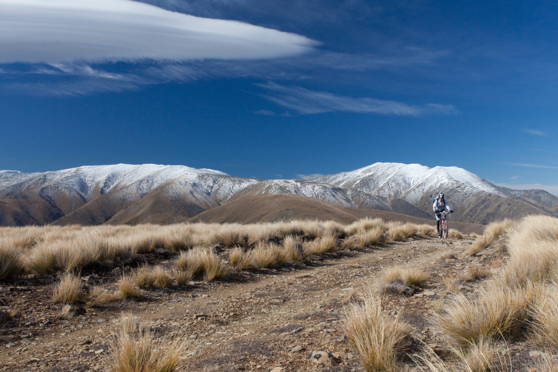 mountain biking new zealand