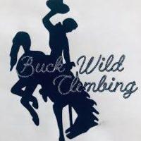 Buck Wild Climbing Guides
