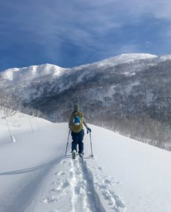 Niseko Backcountry Skiing
