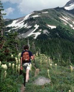 Pacific Crest Trail Oregon Hiking