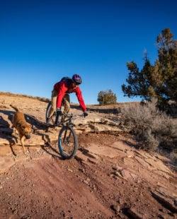 Fruita Mountain Biking