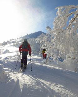 Mount Tokachi backcountry skiing