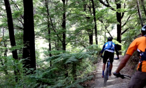 New Zealand mountain biking video