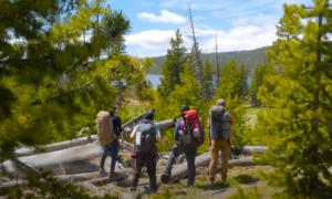 Yosemite hiking video