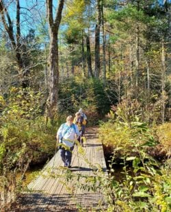 Asheville Hiking