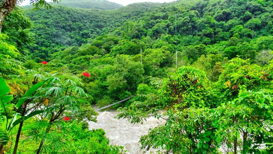 Jukumari river