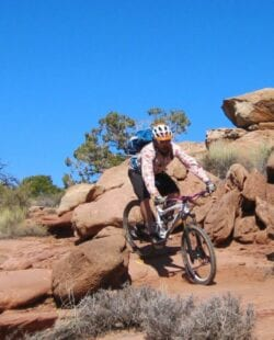 Magnificent 7 Mountain Biking Day Tour