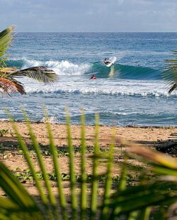 Surfing in Puerto Rico, beach and waves framed by a couple of palm trees