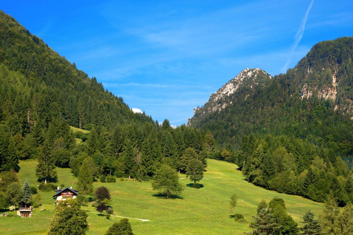 Alpine landscape with forest and green meadows in Valbruna, small village near Tarvisio, Friuli Venezia Giulia, Italy
