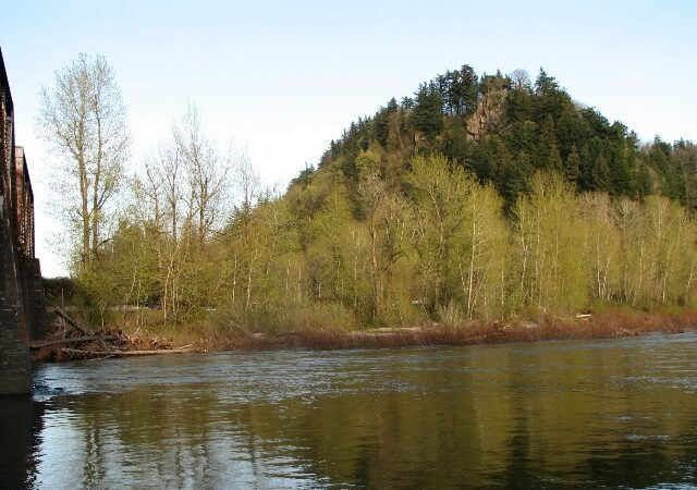 Broughton's Bluff is the 160 foot geologic boundary between the Cascade Mountain Range and the Willamette Valley