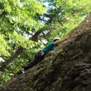 After 100 feet of climbing you ascend above the canopy and are greeted by the sun