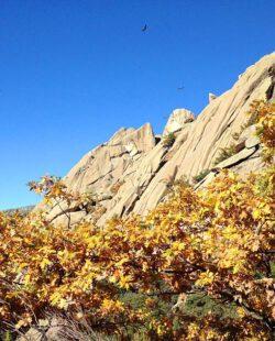Sunny day and rocks in La Pedriza