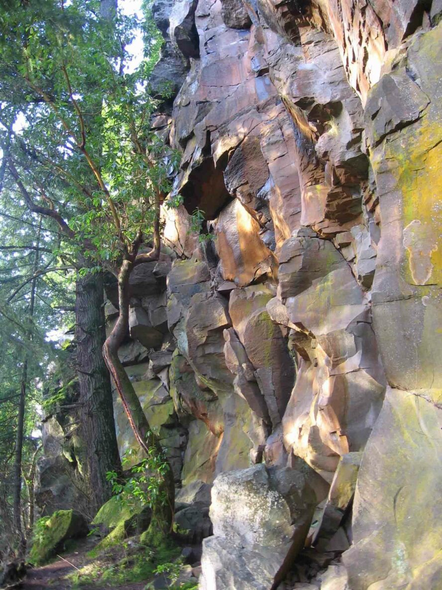 The Madrone Wall was opened to the public after a 20 year effort, unveiling a wide range of features and excellent climbing