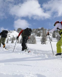 Skiers learning about the avalanche