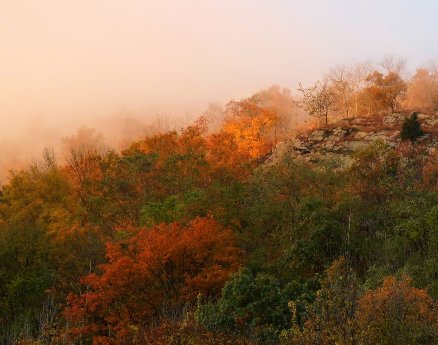 """The Appalachian Trail runs right across the top of Mt. Minsi in Pennsylvania, or """"Painsylvania,"""" as some refer to it. This is where your willpower gets put to the test but luckily you get breathtaking scenery in the Delaware Water Gap to make it all worth it."""