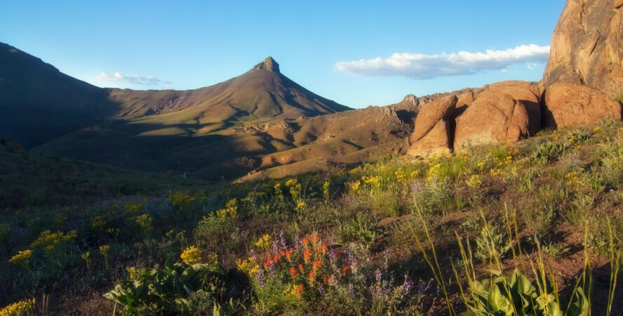 The Trout Creek Mountains are a remote, semi-arid range comprising over 800 square miles