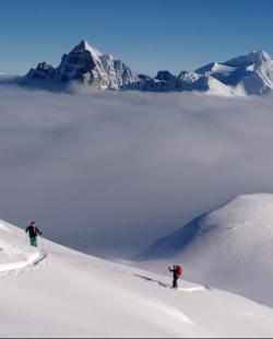 Snowy meadows around Canadian Rockies