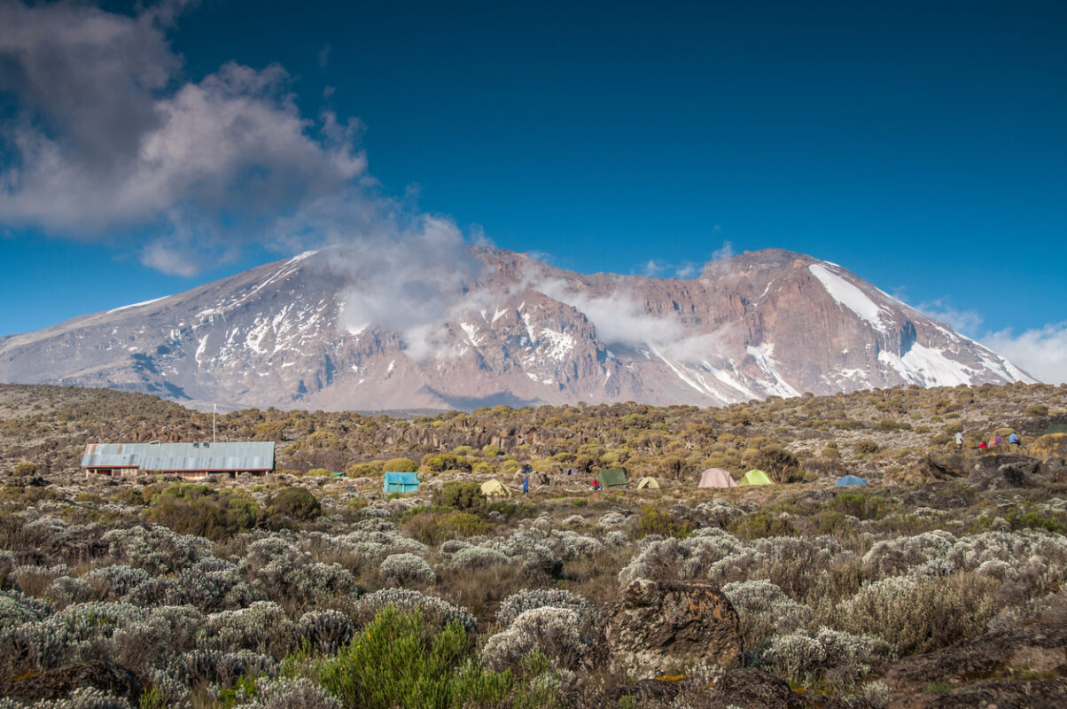 Looking up to Kilimanjaro from Shira campsite