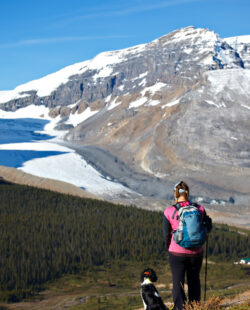 Trekking in the Plain of the Six Glaciers